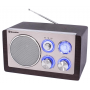 Roadstar HRA-1245NWD Retro radio met AUX ingang