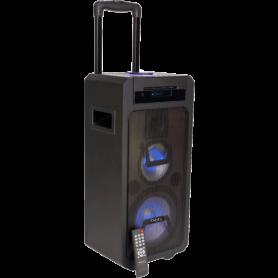 DRAAGBARE 3-WEG SOUNDBOX - 350W MET CD, USB, Bluetooth