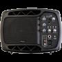 Ibiza Sound MS5-150