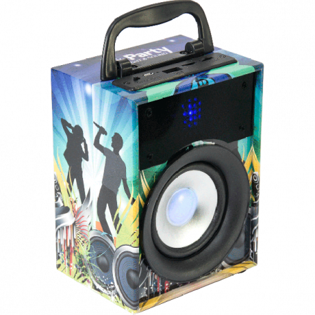 Ibiza Sound 10W BT actieve speaker met accu