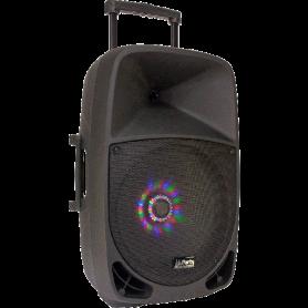 Draagbare luidspreker 15''/38cm - 800W met usb, bluetooth