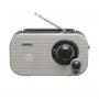 Denver TR-54 grijs - FM radio